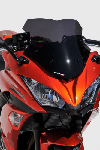 Racing Windshield Ninja650